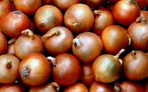 fresh_onions2